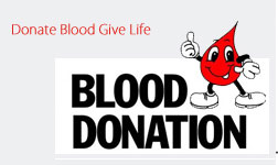 Palakkad Blood Bank